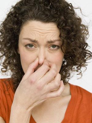 5 เทคนิคขจัดกลิ่นภายในบ้าน